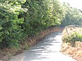Estrada Rural. - panoramio (2).jpg
