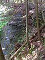 FLT M22 Chippewa Falls Trail 1.5 mi - Chippewa Falls - panoramio.jpg
