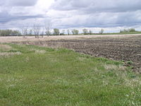 Farm in campbell co south dakota.jpg