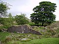 Farm ruin - geograph.org.uk - 805917.jpg
