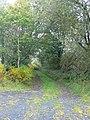 Farm track near Rhyduchaf - geograph.org.uk - 572371.jpg