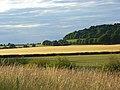 Farmland, Bledlow - geograph.org.uk - 892912.jpg
