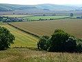 Farmland, Maiden Bradley - geograph.org.uk - 909690.jpg
