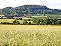 Farmland, Monmouthshire - geograph.org.uk - 889894.jpg