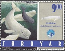 Photo of stamp showing two adult and one juvenile, swimming