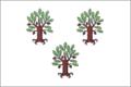 Flag of Dubovsky (Stavropol krai).png