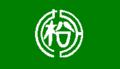 Flag of Matsudai Niigata.png