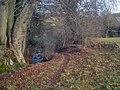 Footbridge at Burrington Common - geograph.org.uk - 1291770.jpg