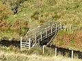 Footbridge over Afon Clywedog - geograph.org.uk - 601122.jpg