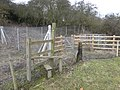 Footpath, stile and rabbit fencing - geograph.org.uk - 1706397.jpg