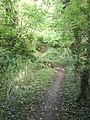 Footpath Near Cherkley Court - geograph.org.uk - 256279.jpg