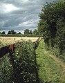 Footpath to Badwell Ash - geograph.org.uk - 867484.jpg