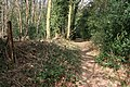 Footpath to Hook Heath - geograph.org.uk - 1778761.jpg