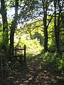 Footpath to Pencoose from Trehane Wood - geograph.org.uk - 1526147.jpg