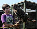 Former Ministry of Defence Police Sgt. Jimmy Ewing's son holds an eagle owl at the Phoenix Bird Control's facility at Royal Air Force Mildenhall, United Kingdom, Aug. 10, 2012 120810-F-UA873-270.jpg
