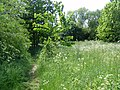 Former course of the Bedford power station goods railway - 9055729248.jpg