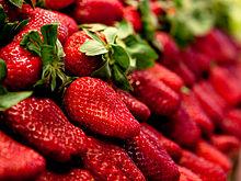Fraise couleur wikip dia - Couleur fraise ecrasee ...