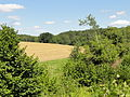 Frouville (95), paysage entre Messelan et Frouville 5.jpg