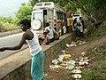 Garbage and tourism ATR road P1180862.jpg