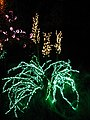Garden d'Lights 2008 at the Bellevue Botanical Garden, img014.jpg