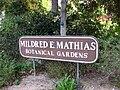 Gardenology.org-IMG 2340 ucla09.jpg