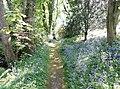 Geilston Gardens, burn side walk, Cardross, Scotland.jpg