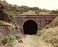 Gelli Tunnel near Croeserw - geograph.org.uk - 243893.jpg