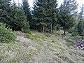 Gemeinde Naas, 8160, Austria - panoramio (2).jpg