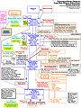 Genealogia-de-los-incas-44.jpg