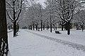 Geneve Sous la neige - 2013 - panoramio (24).jpg