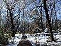 Georgia snow IMG 4978 (38061307845).jpg