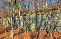 Gfp-missouri-babbler-state-park-rock-wall-at-babbler.jpg