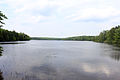 Gfp-pennsylvania-promised-land-state-park-lakeview.jpg