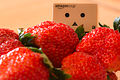 Giant strawberries (11798495283).jpg