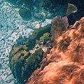 Glover's Reef 2-15 (33205019061).jpg