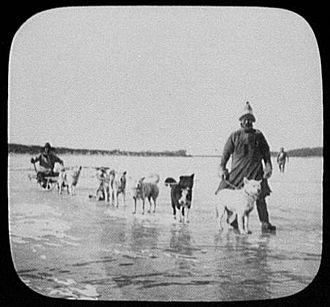 Amur River - Goldi men with dog sled on Amur River 1895