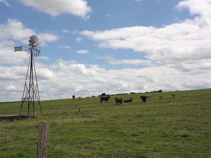 Gondrexon (M-et-M) wind wheel