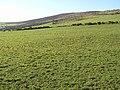 Gortgranagh Townland - geograph.org.uk - 126142.jpg