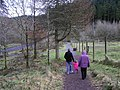 Gortin Glens Forest Park (5) - geograph.org.uk - 1711703.jpg