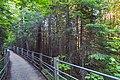 Grand Portage State Park High Falls Boardwalk - Northern Minnesota (37085760274).jpg