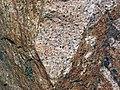 Granite (Giants Range Batholith, Neoarchean, 2.67-2.68 Ga; Rt. 1 roadcut, south of Ely, Minnesota, USA) 2 (20831100923).jpg
