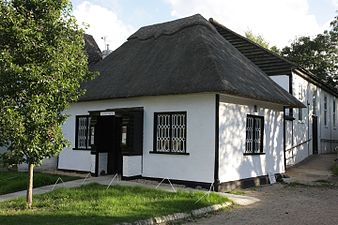 Small thatched building
