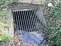 Grate on the culvert - geograph.org.uk - 1634830.jpg