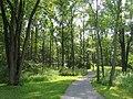Graver Arboretum - 330.jpg