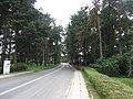 Grigiškės, Lithuania - panoramio (114).jpg