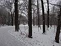 Großer Garten, Dresden in winter (1070).jpg