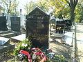 Grob Peke Dapcevica Novo groblje.JPG