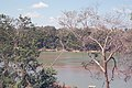 GuyanaBrazil.jpg