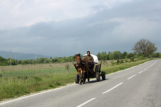 Romani people in Bulgaria - A Romani in wagon (Dolna Banya)