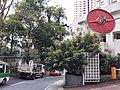 HK ML 香港半山區 Mid-levels 舊山頂道 Old Peak Road near Hornsy Road April 2020 SS2 17.jpg